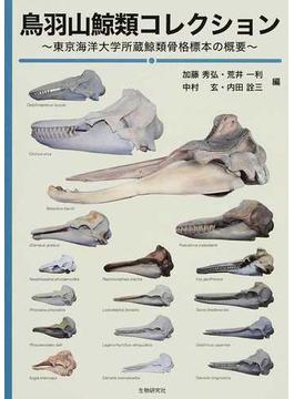 鳥羽山鯨類コレクション 東京海洋大学所蔵鯨類骨格標本の概要