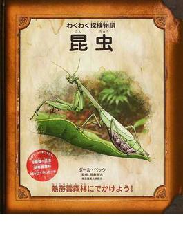 昆虫 熱帯雲霧林にでかけよう!