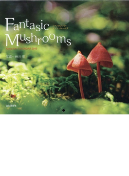 Fantasic Mushrooms 森のきのこ