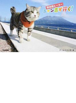野良猫ヒーローニャン吉が行く!