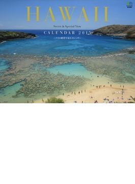 SECRET HAWAII カレンダー 2015