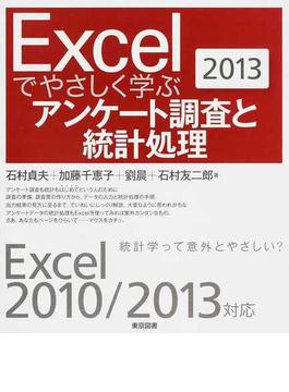Excelでやさしく学ぶアンケート調査と統計処理 2013