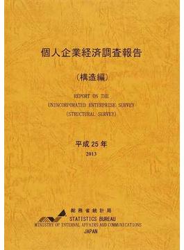 個人企業経済調査報告 平成25年構造編