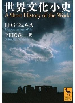 【期間限定価格】世界文化小史