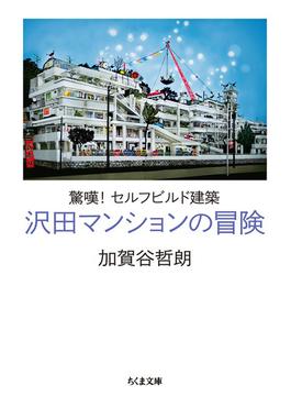 沢田マンションの冒険 驚嘆!セルフビルド建築 (ちくま文庫)