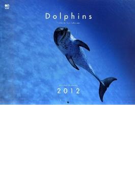 Dolphinsヒーリングカレンダー 2012