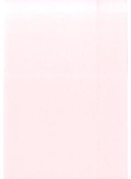 824 就職活動手帳PLUS(ピンク)
