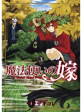 魔法使いの嫁(3)(月刊コミックブレイド)