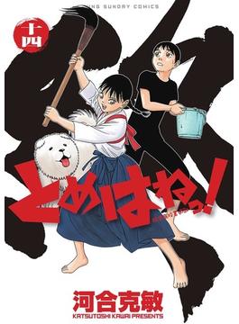 とめはねっ! 14 鈴里高校書道部 (ヤングサンデーコミックス)(ヤングサンデーコミックス)