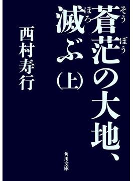 【期間限定価格】蒼茫の大地、滅ぶ (上)