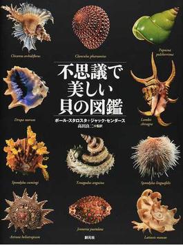 不思議で美しい貝の図鑑