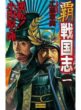 【全1-3セット】覇 戦国志(歴史群像新書)