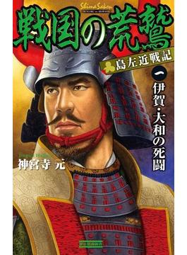 【全1-2セット】戦国の荒鷲(歴史群像新書)