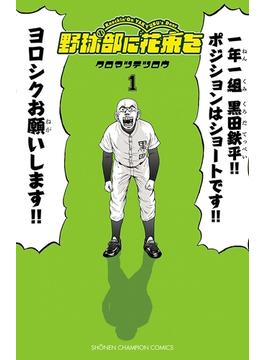 【全1-9セット】野球部に花束を ~Knockin' On YAKYUBU's Door~(少年チャンピオン・コミックス)