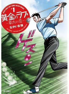 【全1-11セット】黄金のラフ2~草太の恋~(ビッグコミックス)