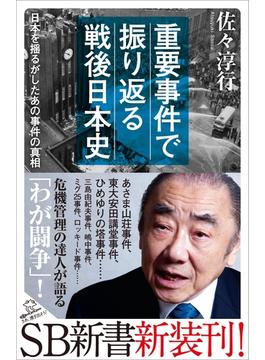 重要事件で振り返る戦後日本史(ソフトバンク新書)