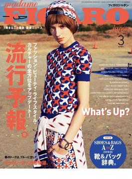 madame FIGARO japon(フィガロ ジャポン)2016年 3月号(madame FIGARO japon)