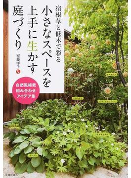 宿根草と低木で彩る小さなスペースを上手に生かす庭づくり 自然風植栽組み合わせアイデア集