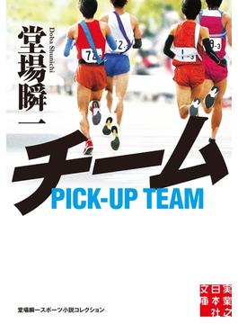 【期間限定価格】チーム