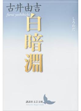 白暗淵(講談社文芸文庫)