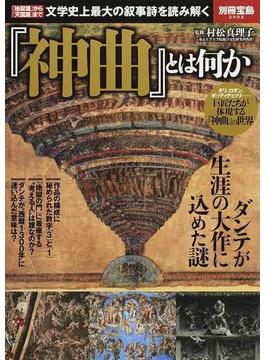 『神曲』とは何か 「地獄篇」から「天国篇」まで文学史上最大の叙事詩を読み解く