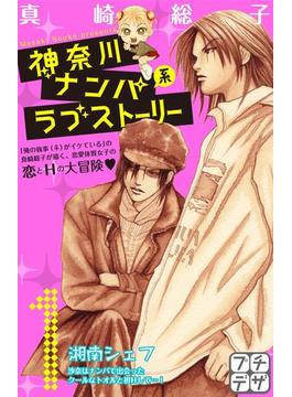 【全1-13セット】神奈川ナンパ系ラブストーリー プチデザ