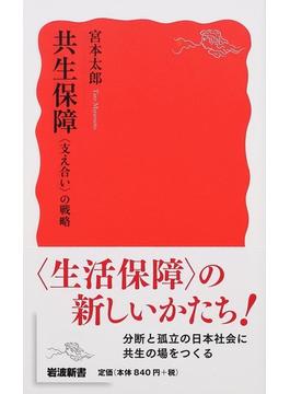 共生保障 〈支え合い〉の戦略(岩波新書 新赤版)