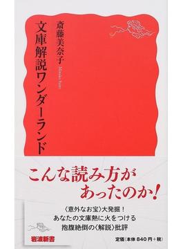文庫解説ワンダーランド(岩波新書 新赤版)