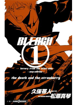 BLEACH letters from the other side ―new edition―(ジャンプジェイブックスDIGITAL)