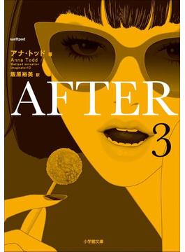 【期間限定価格】AFTER 3