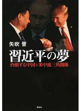 習近平の夢 台頭する中国と米中露三角関係