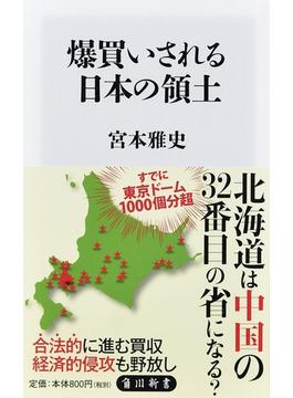 爆買いされる日本の領土(角川新書)