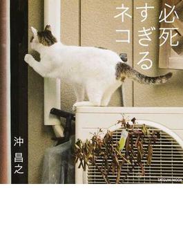 写真集 必死すぎるネコ(タツミムック)