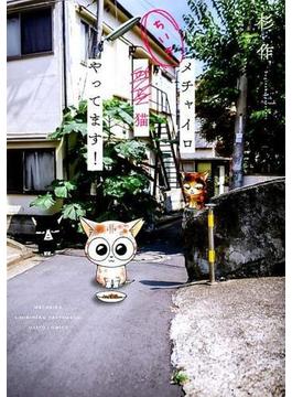 メチャイロちいき猫やってます! (DAITO COMICS)