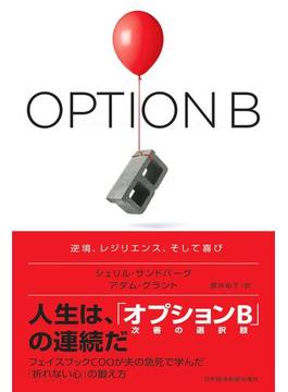 オプションB