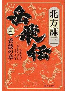 岳飛伝 13 蒼波の章(集英社文庫)