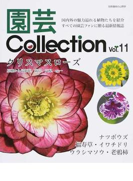 園芸Collection Vol.11 クリスマスローズ ナツボウズ イワチドリ ウラシマソウ