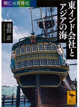 興亡の世界史 東インド会社とアジアの海(講談社学術文庫)