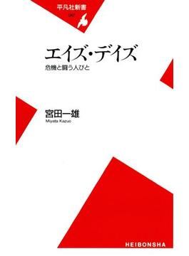 エイズ・デイズ(平凡社新書)