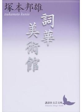 詞華美術館(講談社文芸文庫)