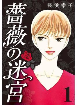 【全1-11セット】薔薇の迷宮 ~義兄の死、姉の失踪、妹が探し求める真実~