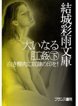 【オンデマンドブック】大いなる肛姦(下) 白き臀肉に奴隷の印を!