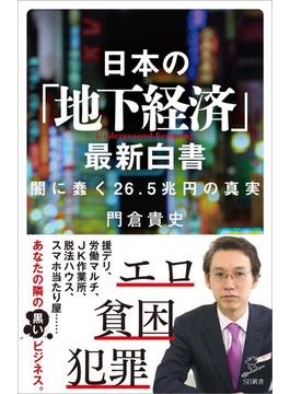 日本の「地下経済」最新白書(ソフトバンク新書)