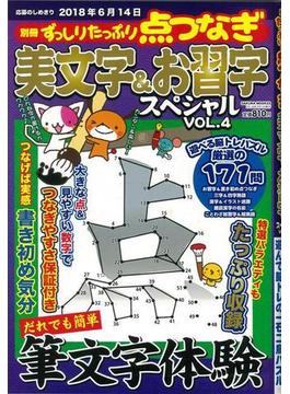 【アウトレットブック】美文字&お習字スペシャル 4