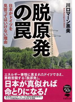 脱原発の罠 日本がドイツを見習ってはいけない理由(草思社文庫)