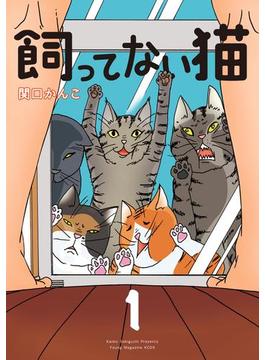 飼ってない猫(1)