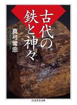 古代の鉄と神々(ちくま学芸文庫)