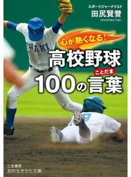 心を熱くする! 高校野球100の「ことだま」(知的生きかた文庫)