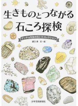 生きものとつながる石ころ探検 ゲッチョ先生の石ころコレクション