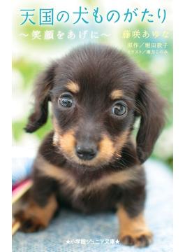 天国の犬ものがたり 笑顔をあげに(小学館ジュニア文庫)